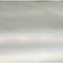 Behr Hologramm kleebis 2tk pakis   6715947