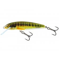 Salmo Minnow Floating 5cm/3g Holographic Real Minnow